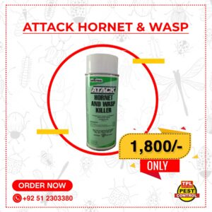 Attack Hornet & Wasp